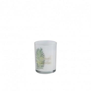 Bougie Parfumée Jungle Blanc/Vert S-40H