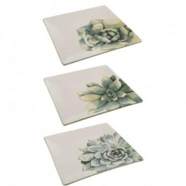 Assiette Plante Gras Ceramique Blanc/Vert