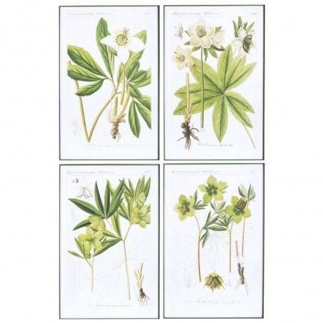 Deco Medium Bois/Verre Blanc/Vert