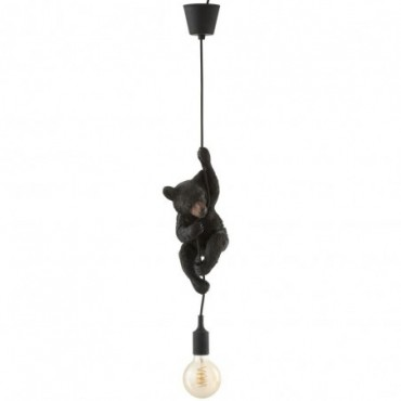 Lampe Ours Susp Res Marr F