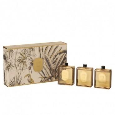 Boite 3 Huiles Parfumées Tropical Jungle Ocre