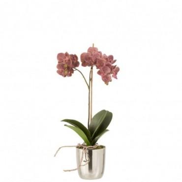 Orchidee + Pot Plastique-Ciment Rose Foncé-Argent