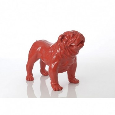 Bulldog Americain Rouge