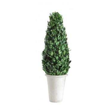 Ron Deco vert plastique