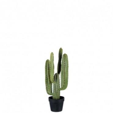 Cactus pot noir resine vert small