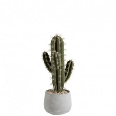 Succulente pot ciment vert