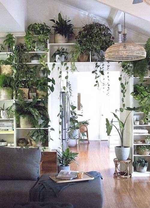 interieur verdoyant